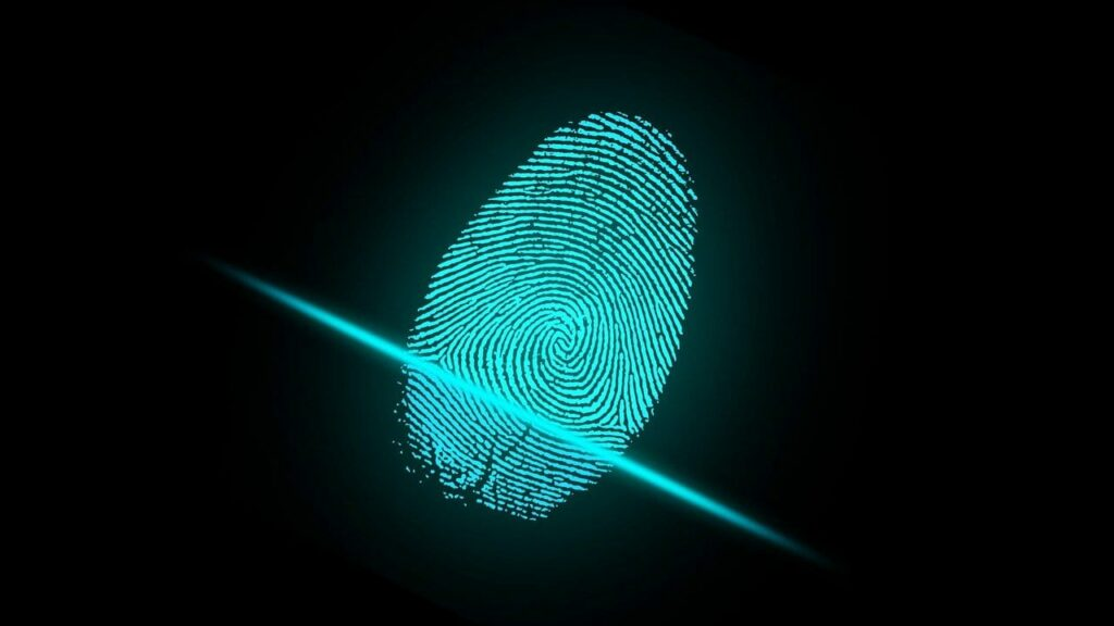 Who owns your digital identity and how can you protect it?